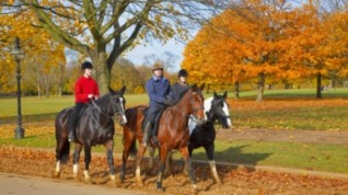 horse-riding-hyde-park